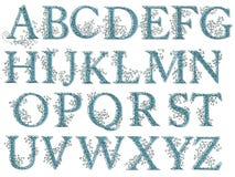 Police florale d'alphabet de filet de vintage Images libres de droits