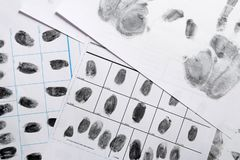 Police forms with fingerprints, top view. Forensic examination royalty free stock photo
