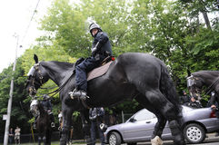 Police on horse. Royalty Free Stock Images