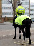 Police on Horse Stock Image