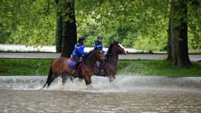 Police on horse enjoying high water in Loire valley Royalty Free Stock Photos