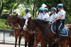 Police on Horseback at White House royalty free stock photo