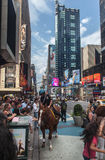 Police Horseman at Times Square New York City Stock Photography