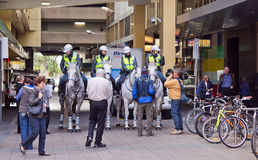 Police on horses in the city of adelaide Royalty Free Stock Image