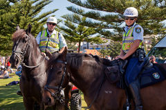 Police horses Royalty Free Stock Photography
