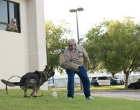Police K-9 Demonstration. At Escambia County Sheriff in Pensacola, Florida Royalty Free Stock Images
