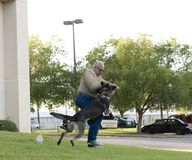 Police K-9 Demonstration. At Escambia County Sheriff in Pensacola, Florida Stock Photo
