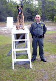Police K9 Stock Photos