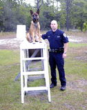 Police K9 photos stock