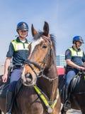Police montée par Néerlandais Photo stock