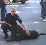 Police officer with her bomb dog stock photos