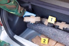 Crime scene: drug smuggling in the trunk of a car. Police officer holding drug package found in the trunk of a car Royalty Free Stock Images