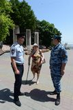 Police officers patrol in the centre of Volgograd. Royalty Free Stock Photos