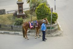 A police patrolman and his horse are at a crossroads stock photo