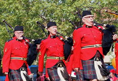 Police-RCMP montée par Canadien royal Photo libre de droits
