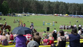 Police riders horse. Panorama of people enjoy various riders in annual horse festival stock footage