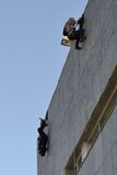 Police special forces in action. Police special forces in Spain in action stock photography