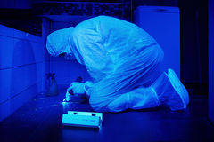 Police technician collecting DNA from stains under UV light Royalty Free Stock Images