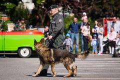 Police training exercise in Pezinok, Slovakia Royalty Free Stock Photos