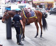 Police woman with horse in NYC Stock Photos