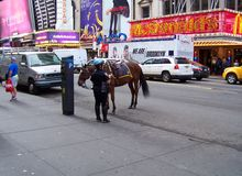 Police woman with horse in NYC Stock Image