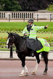 Policeman on the horse Stock Image