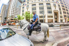 Policeman on horse checks correct Royalty Free Stock Photography