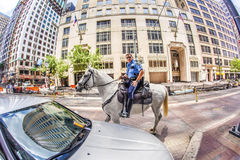 Policeman on horse checks correct parking Royalty Free Stock Images