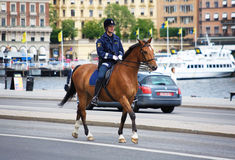 Policeman on the horse in Stockholm Royalty Free Stock Images