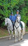 Policeman and police woman ride white horses Royalty Free Stock Photo