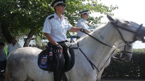 Policemen on horseback stock video