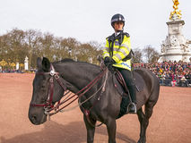 Policial de LONDRES a cavalo no Buckingham Palace Fotos de Stock Royalty Free