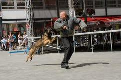 Policie Brno della tana Fotografia Stock Libera da Diritti