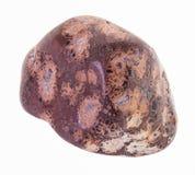 Polierleopardhaut-Jaspisedelstein auf Weiß lizenzfreie stockfotos
