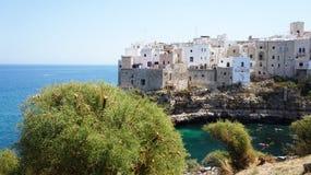 Polignano μια φοράδα: δέντρα στη συναρπαστική θέα, Apulia, Ιταλία ιταλικό πανόραμα Απότομοι βράχοι στην αδριατική θάλασσα Στοκ φωτογραφίες με δικαίωμα ελεύθερης χρήσης