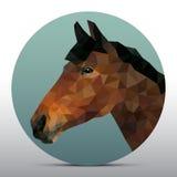 Poligonalna głowa koń Fotografia Royalty Free