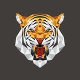 Poligono capo geometrico, illustrazione della tigre di vettore Immagini Stock Libere da Diritti