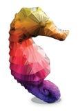 Poligono del cavalluccio marino Fotografia Stock