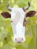 Poligono della mucca Fotografia Stock