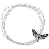 Polilla de halcón de la cabeza de muerte (atropos del Acherontia) y alambre de púas stock de ilustración