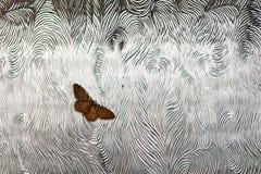 Mariposa sobre el vidrio Foto de archivo libre de regalías