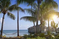 Polinezyjczyka typowy krajobraz - seacoast z drzewkami palmowymi i małymi domami na wodzie obrazy royalty free