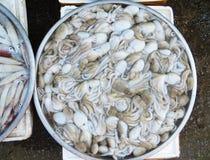 Polipi Phuquoc Vietnam dei frutti di mare fotografia stock libera da diritti