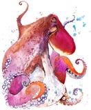 polipo Illustrazione dell'acquerello del polipo Parola subacquea Immagine Stock Libera da Diritti