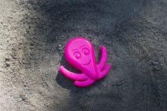 Polipo rosa nella sabbia Fotografie Stock
