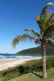³polis för Praia Brava - FlorianÃ, Santa Catarina - Brasilien Royaltyfri Foto