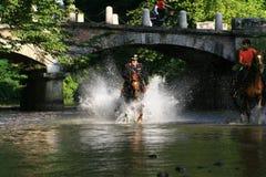 Polis på hästrygg in i floden med vattensprej Fotografering för Bildbyråer