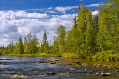 Polisarka river. Kola Peninsula. Royalty Free Stock Images
