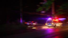 Polisen av bilar rider på nattvägen med siren stock video