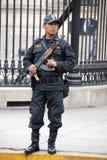 Polisen framme den regerings- slotten Royaltyfri Fotografi